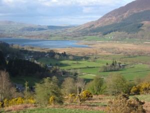 Bassenthwaite from Noble Knott
